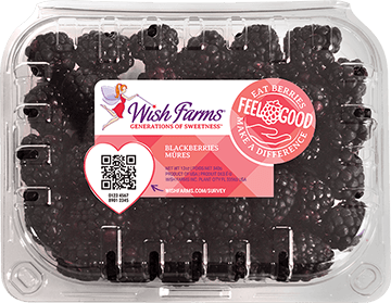 Image of Wish Farms Blackberry Clamshell