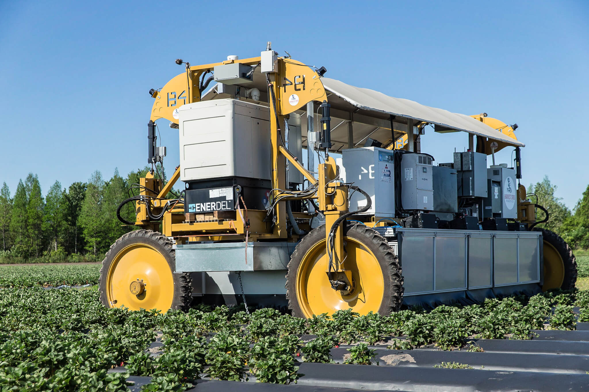 Machinery Strawberry Growers Wish Farms Florida