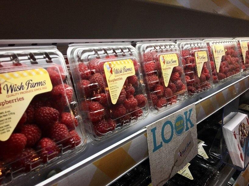 Wish Farms Florida Raspberries On Display