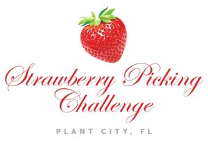 Strawberry Picing Challenge