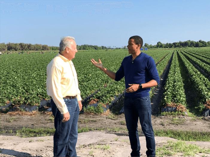 Harvest Croo Robotics Wish Farms Strawberries