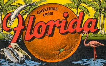 Florida Citrus blog FFVA