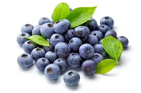 Wish Farms Blueberries